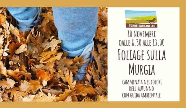 Torre Sansanello Foliage sulla Murgia Puglia_dem